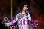 Prince live in Birmingham in 2014