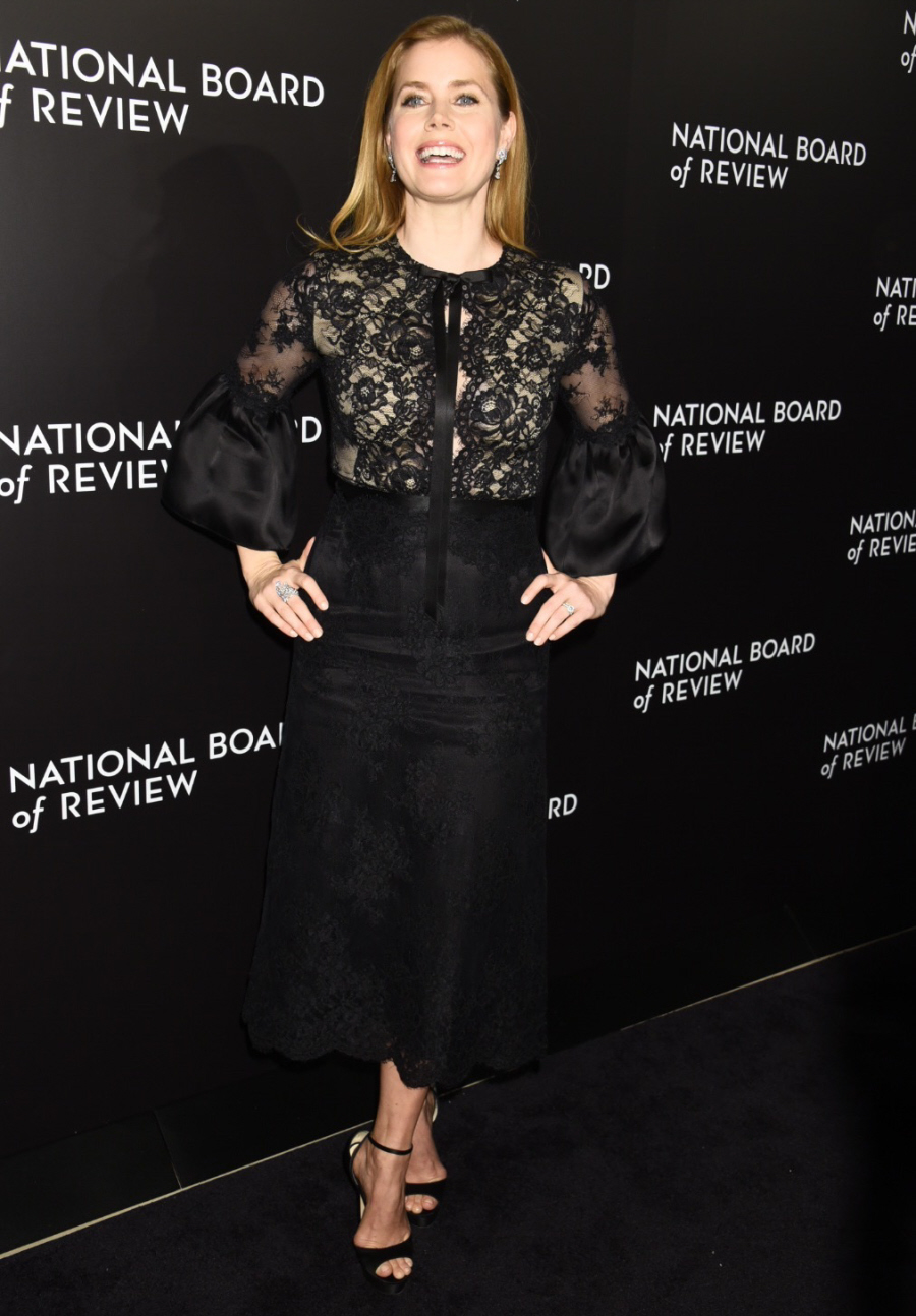wenn30685327  bitchy | Amy Adams in Marchesa on the NBR Awards in NYC: beautiful or meh? wenn30685327