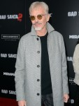 New York Premiere of 'Bad Santa 2' - Red Carpet Arrivals