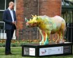 Prince William, Duke of Cambridge attends the Tusk Rhino Trail