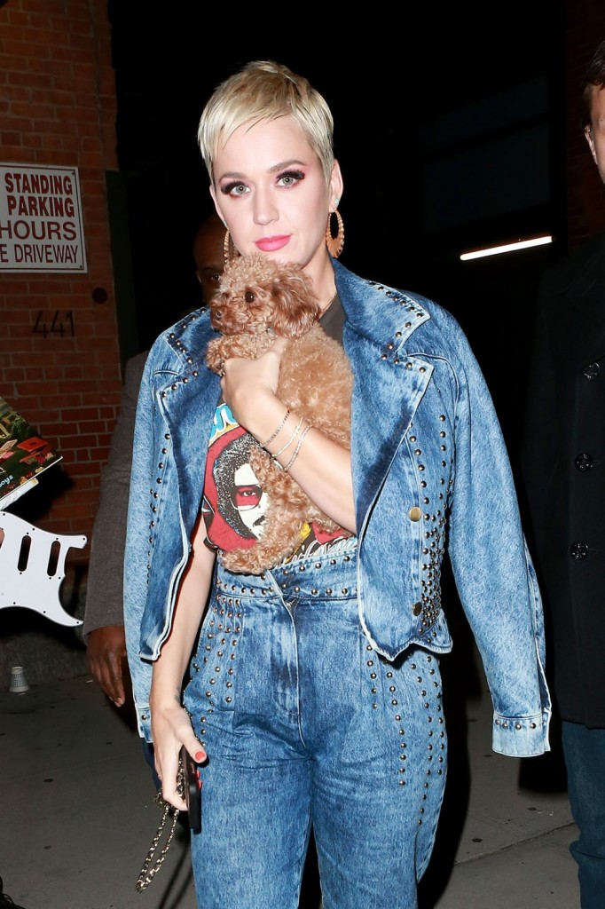 Katy Perry is seen leaving American Idol auditions with her dog Nugget