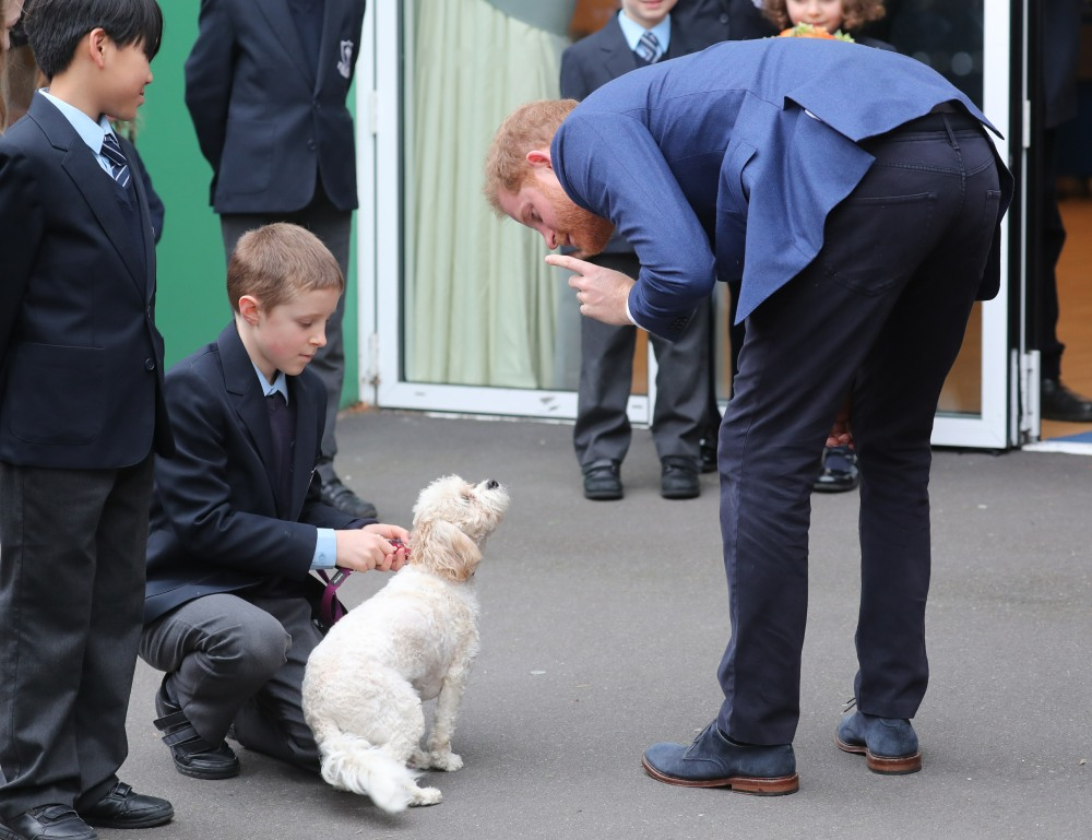 Prince Harry, Duke of Sussex takes part in a tree planting project