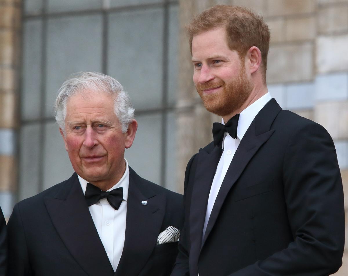 Il principe Carlo e il principe Harry alla premiere mondiale di Nostro pianeta di Netflix al Museo di storia naturale, Kensington, Londra, 4 aprile 2019
