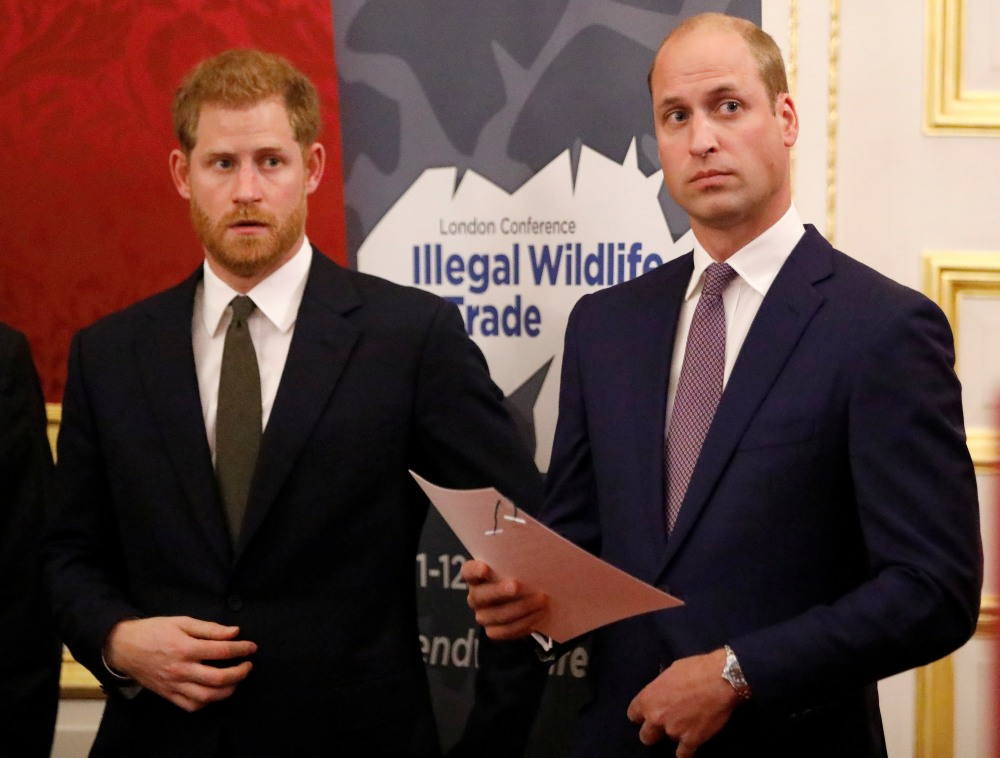 Britain's Prince William, Duke of Cambridge (R) and Britain's Prince Harry, Duke of Sussex,  host a reception to officially open the 2018 Illegal Wildlife Trade Conference at St James' Palace in London on October 10, 2018. - The 2018 Illegal Wildlife Trade Conference is the fourth such international conference bringing together heads of state, ministers and officials from nearly 80 countries, alongside NGOs, academics and businesses, to build on previous efforts to tackle this lucrative criminal trade. The conference is being hosted by the UK Government from 11th – 12th October 2018.
