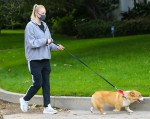 Joe Jonas and Sophie Turner keep up with their Dog Walks