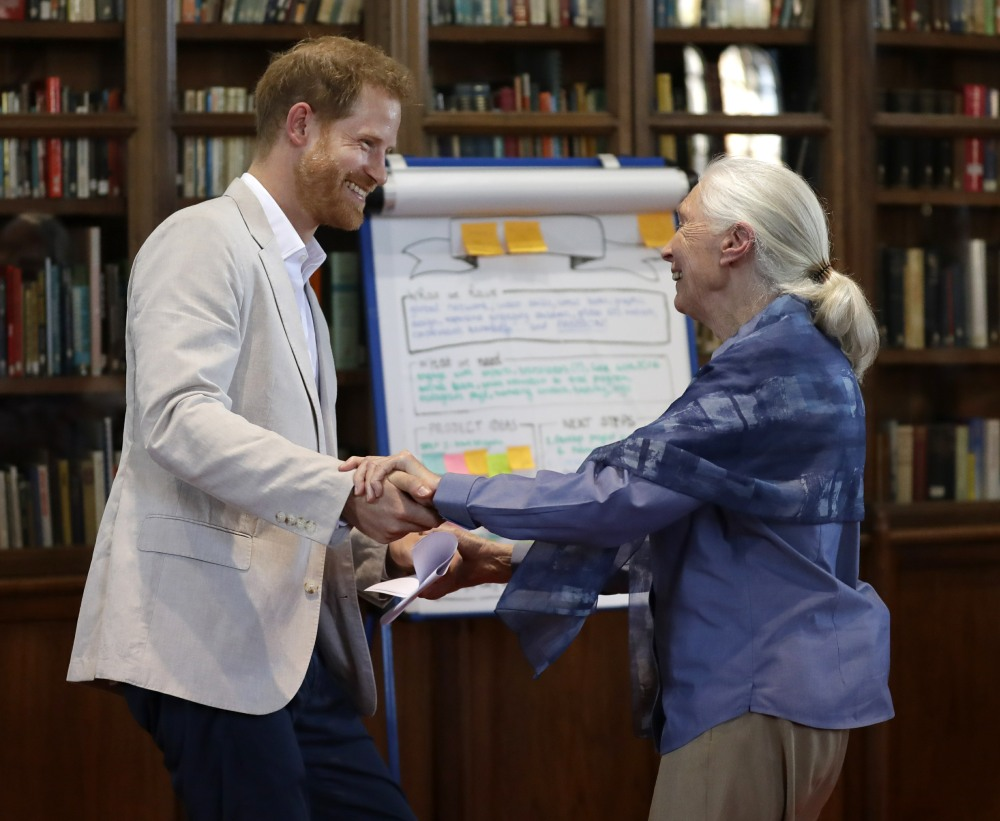 Britain's Prince Harry and Dr Jane Goodall dance as he attends Dr Jane Goodall's Roots & Shoots Global Leadership Meeting at St. George's House, Windsor Castle in England, Tuesday, July 23, 2019. Roots & Shoots is a global programme empowering young people of all ages, working to ignite and inspire the belief that every individual can take action to make the world a better place for people, animals and the environment.