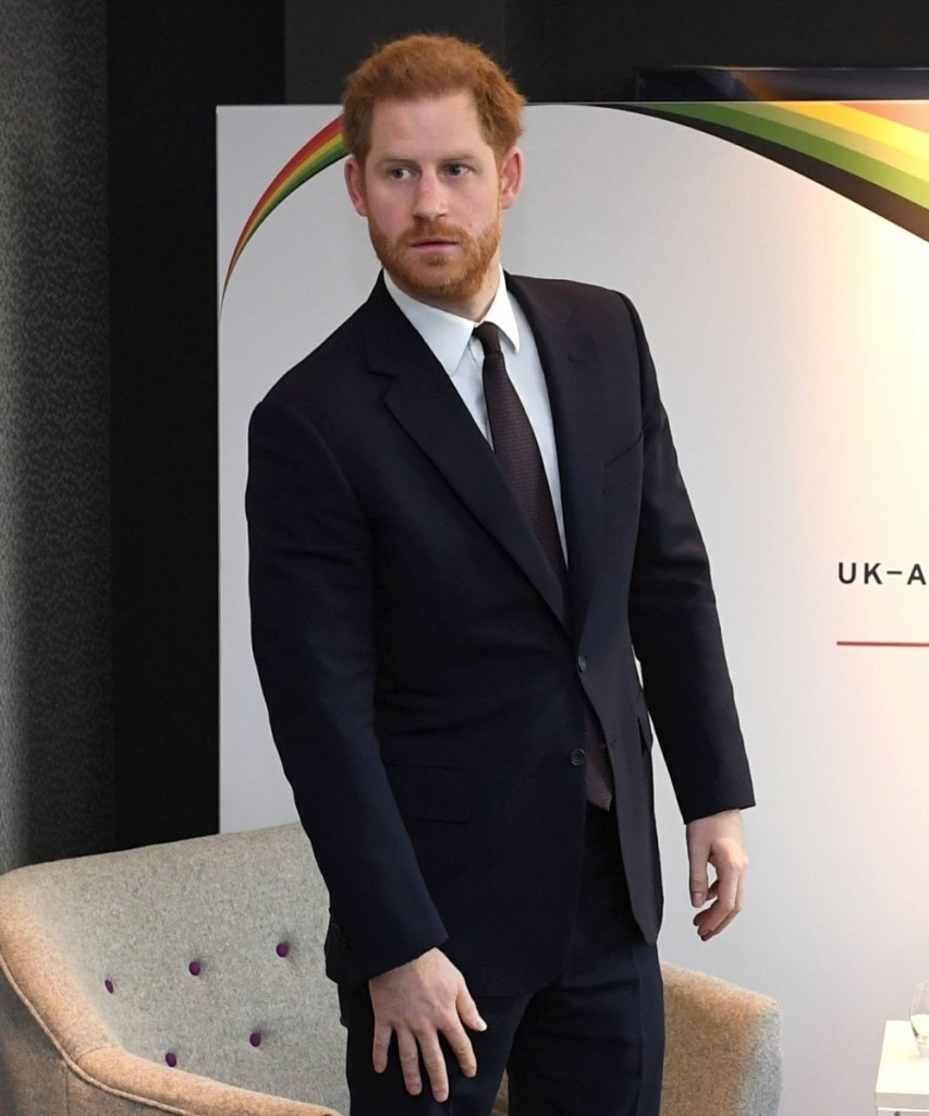 Prince Harry attends a UK-Africa Investment Summit