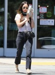 Megan Fox grabs lunch from Erewhon Market in Calabasas