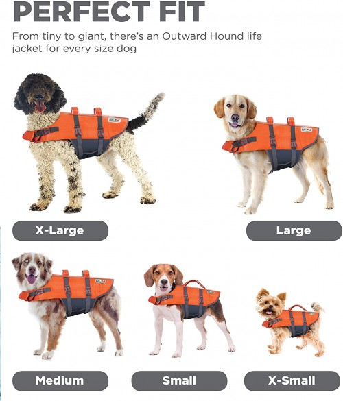 Amazon_DogLifePreserver