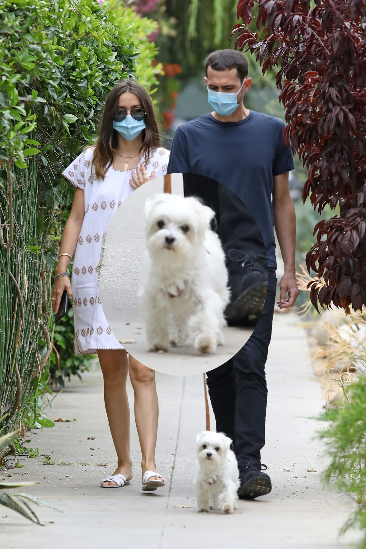 Ana De Armas out for a morning walk with her brother Javier Caso