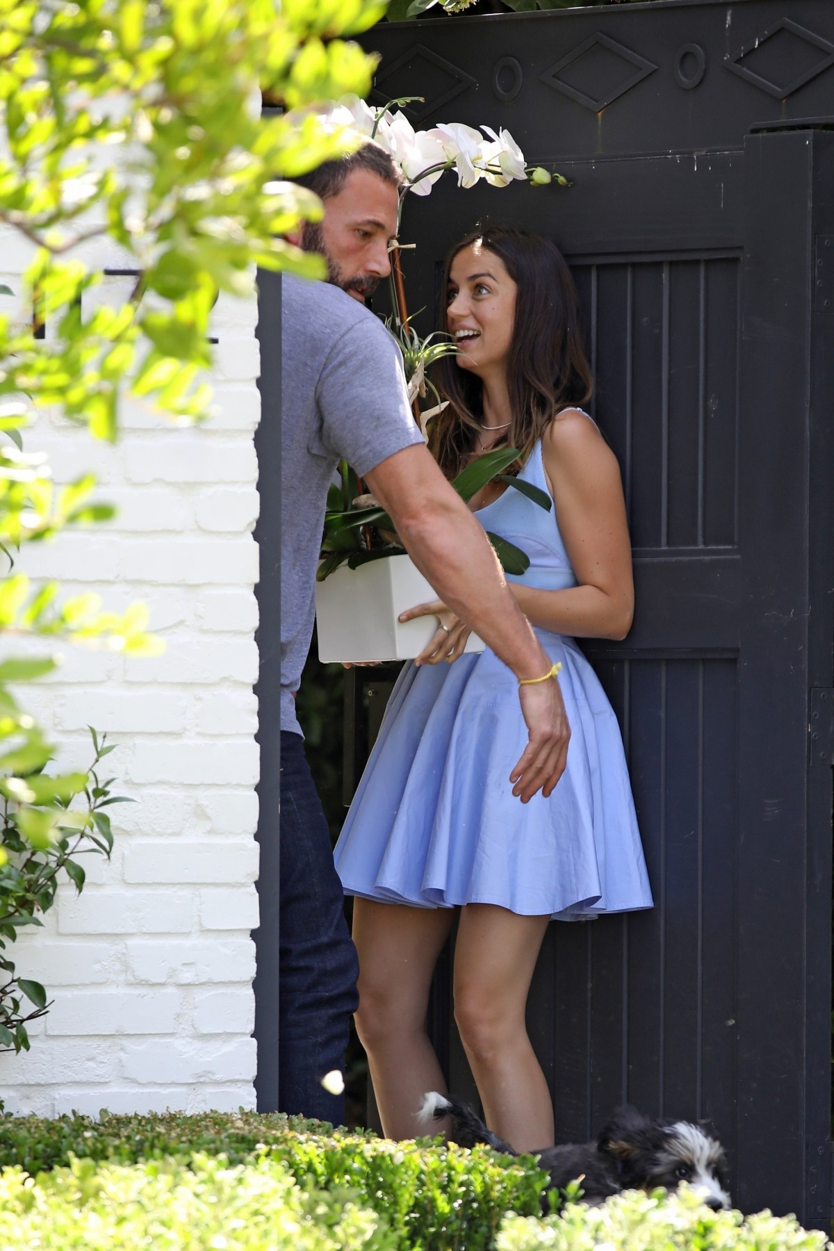 Ana de Armas steps outside to pick up flowers for Ben's Birthday!