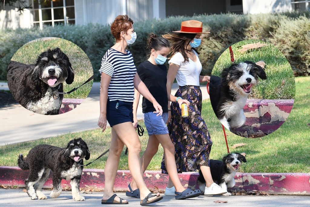 Ana de Armas and Seraphina Affleck take the dogs for a walk