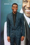 Chadwick Boseman at arrivals for AFI Lif...