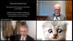 cat lawyer1