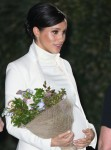 The Duke and Duchess of Sussex attend the gala performance of The Wider Earth