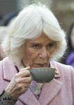 The Prince of Wales and The Duchess of Cornwall visiting Swiss Cottage Farmers Market On arrival at the Farmers' Market, Their Royal Highnesses will watch a performance by a band from Camden-based Young Music Makers, before visiting stalls and meeting stal