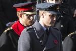 Remembrance Sunday, Cenotaph, London, England, 13/11/16