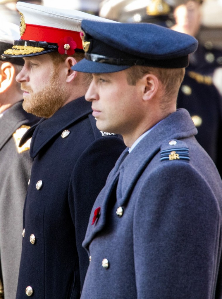Prince William and Prince Harry during the wreath laying at Whitehall in Londen, on November 10, 2019, on the occasion of the National Service of Remembrance at the Cenotaph Photo: Albert Nieboer /  Netherlands OUT / Point de Vue OUT |