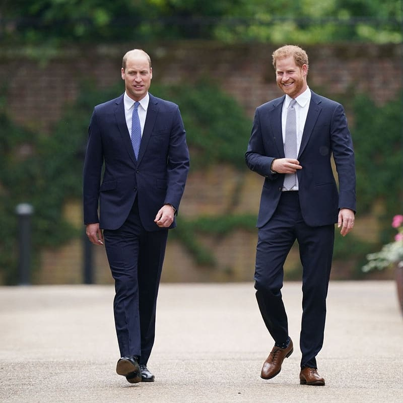 William and Harry walking