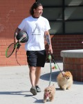 Retired Rockstar Gavin Rossdale walks his dogs on a hot Monday morning